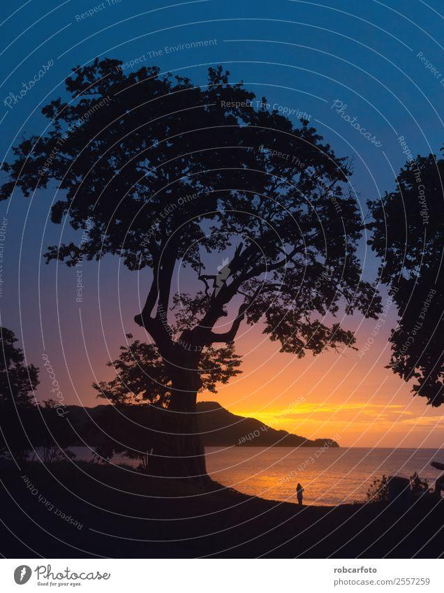 Mann, der den Sonnenuntergang im Pazifik beobachtet. schön Ferien & Urlaub & Reisen Strand Meer Valentinstag Frau Erwachsene Paar Hand Natur Landschaft Himmel