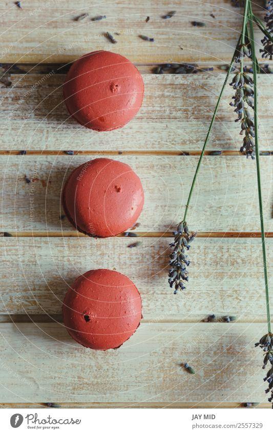 Rosa Makronen und natürliche Blumen auf hellem Holztisch Lebensmittel Milcherzeugnisse Dessert Süßwaren Kaffee Tisch lecker rosa Farbe Tradition Macaron