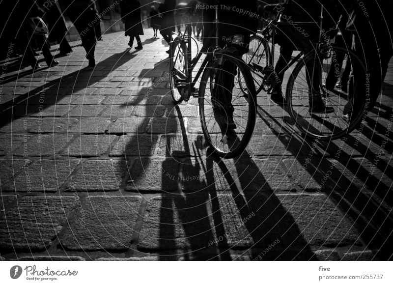 wiener stadtleben Mensch Stadt Ferien & Urlaub & Reisen Menschengruppe Beine Stimmung Fuß Fahrrad gehen maskulin Ausflug Platz Abenteuer Tourismus
