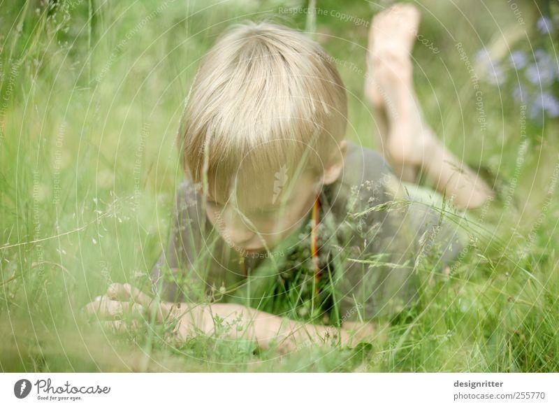 Welterforscher Mensch Kind Junge Kindheit Jugendliche 3-8 Jahre 8-13 Jahre liegen Farbfoto Außenaufnahme Textfreiraum links Tag Schwache Tiefenschärfe