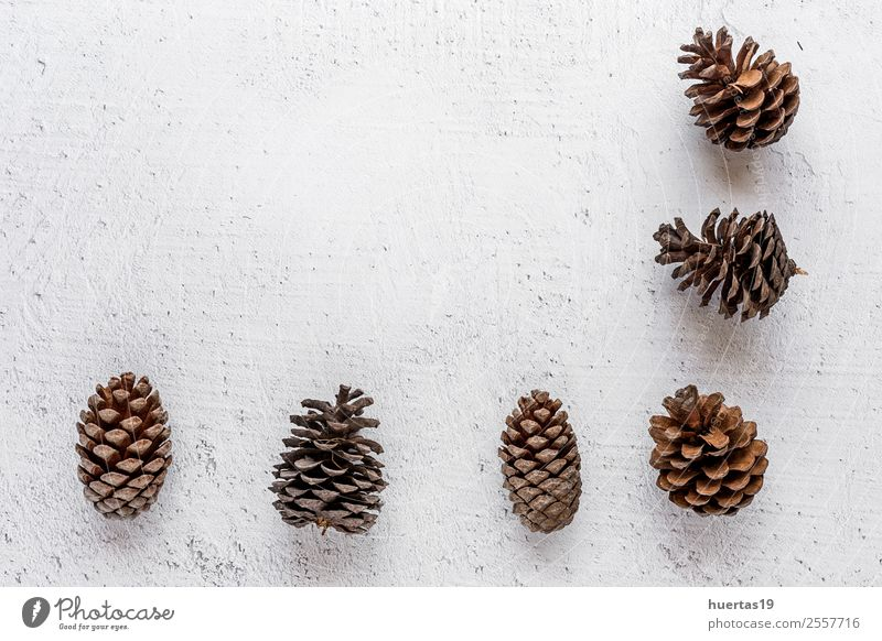 Weihnachtshintergrund Winter Schnee Dekoration & Verzierung Schreibtisch Weihnachten & Advent Silvester u. Neujahr PDA Baum Paket Gefühle Fröhlichkeit