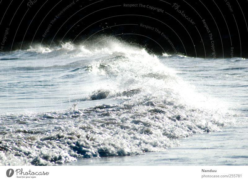 Ein Bildermeer Wasser Meer Umwelt Wellen Energie ästhetisch Kraft Brandung Gischt