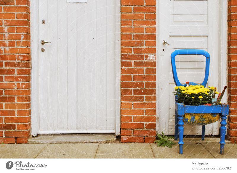 2. türchen Blume Häusliches Leben Dekoration & Verzierung Autotür Stuhl Blühend alternativ Eingangstür
