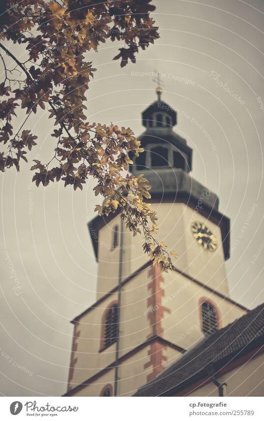 ohne Worte Herbst Pflanze Baum Blatt Kleinstadt Altstadt Kirche Bauwerk Gebäude Architektur heilig Kirchturm Barok Außenaufnahme Tag Abend