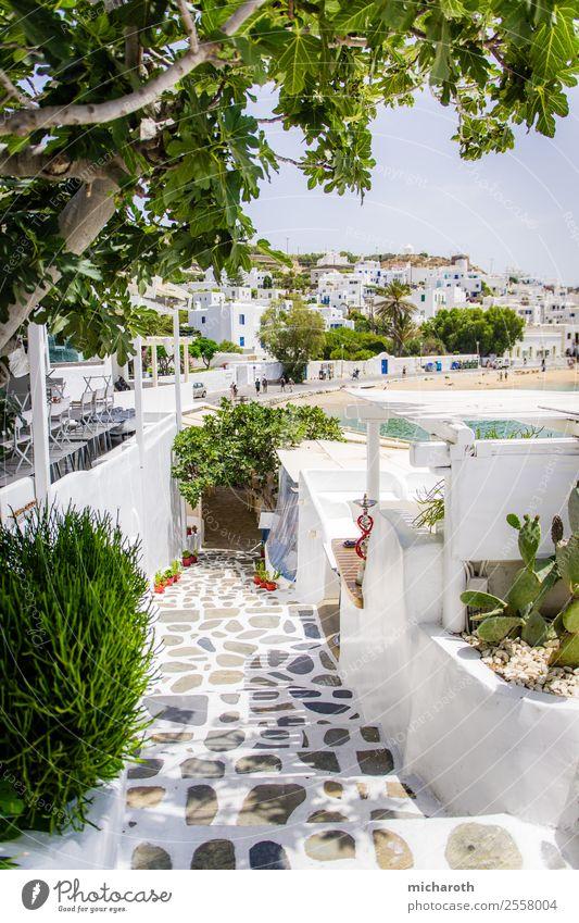 Mykonos Ferien & Urlaub & Reisen alt Sommer grün weiß Baum Erholung Haus Strand Lifestyle Wand Tourismus Mauer Stein Ausflug Freizeit & Hobby