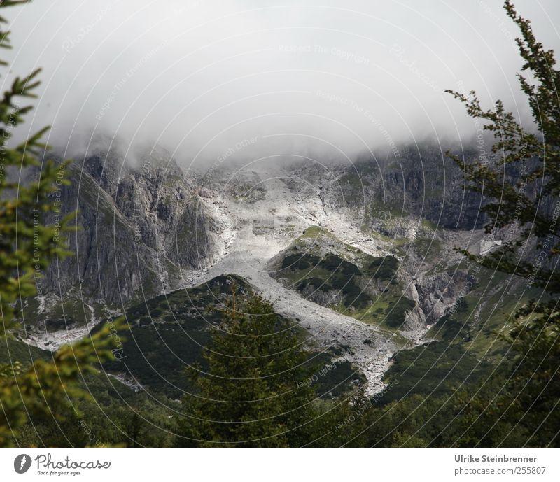 Geröllfeld Ferien & Urlaub & Reisen Tourismus Sommer Berge u. Gebirge Natur Landschaft schlechtes Wetter Nebel Baum Felsen Alpen Hochkönig Saalfelden Österreich