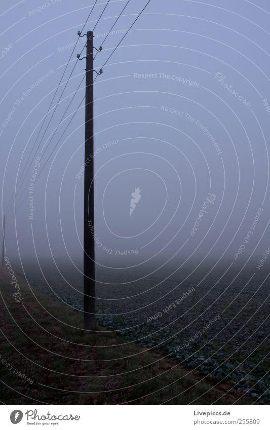 Stromversorgung auf dem Land 2 Holz grau Energiewirtschaft Strommast Nebelwand Nebelstimmung