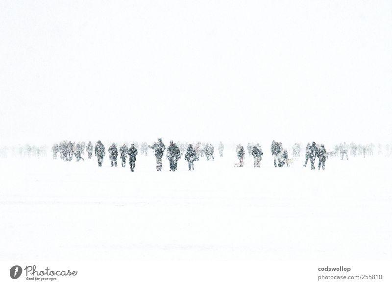 winter wanderland weiß Winter schwarz kalt Schnee grau See Wetter Eis Klima Hamburg Frost Spaziergang gefroren Unwetter Menschenmenge