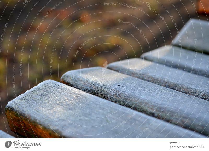 rauhreifer morgen Winter Holz braun grau weiß Bank Raureif kalt Farbfoto Außenaufnahme Morgen Sonnenlicht Schwache Tiefenschärfe Holzbank gefroren Anschnitt
