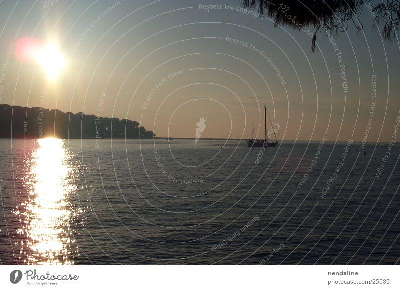 Sommerabend Sonnenuntergang See Wasserfahrzeug Segelboot Wals-Siezenheim Romantik Reflexion & Spiegelung Himmel Lanschaft