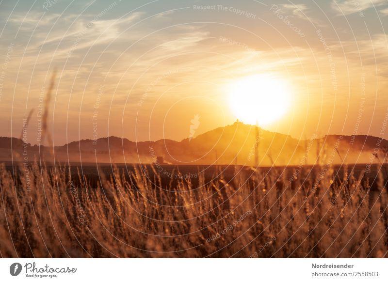 Sonnenglut Arbeit & Erwerbstätigkeit Beruf Arbeitsplatz Landwirtschaft Forstwirtschaft Maschine Umwelt Natur Landschaft Urelemente Sommer Klimawandel