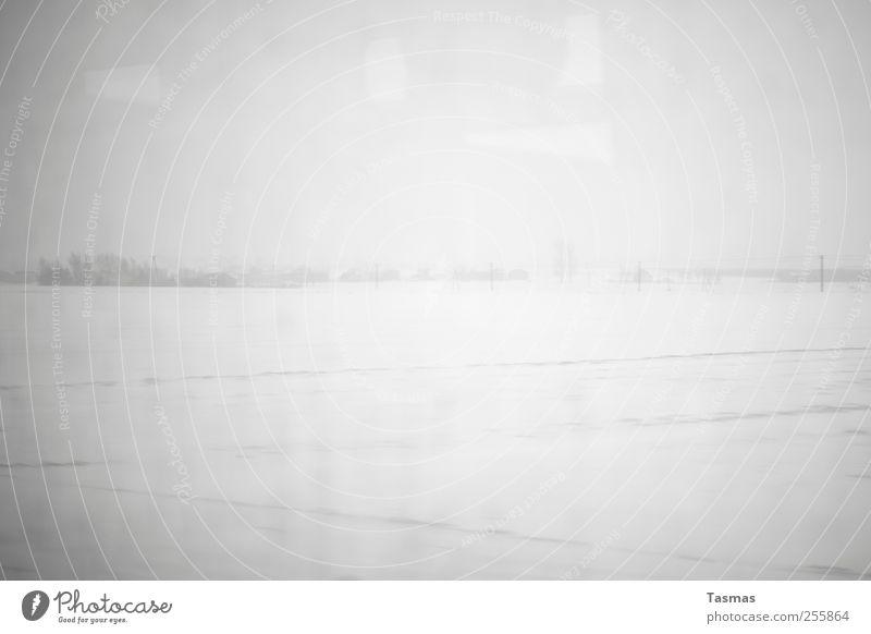 Fade To Grey Winter Einsamkeit kalt Schnee Landschaft Horizont authentisch trist beobachten Langeweile schlechtes Wetter hässlich Enttäuschung Heimweh Endzeitstimmung