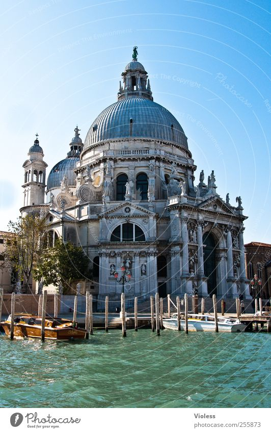 Santa Maria della Salute Architektur Gebäude Religion & Glaube Kirche Bauwerk Italien Denkmal Stadtzentrum Dom Sehenswürdigkeit Venedig Altstadt Hafenstadt