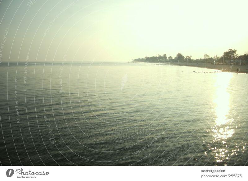 unendlichkeit. Ferien & Urlaub & Reisen Ferne Strand Meer Insel Wellen Wolkenloser Himmel Sommer Schönes Wetter Küste Wasser glänzend Wärme grün Fernweh