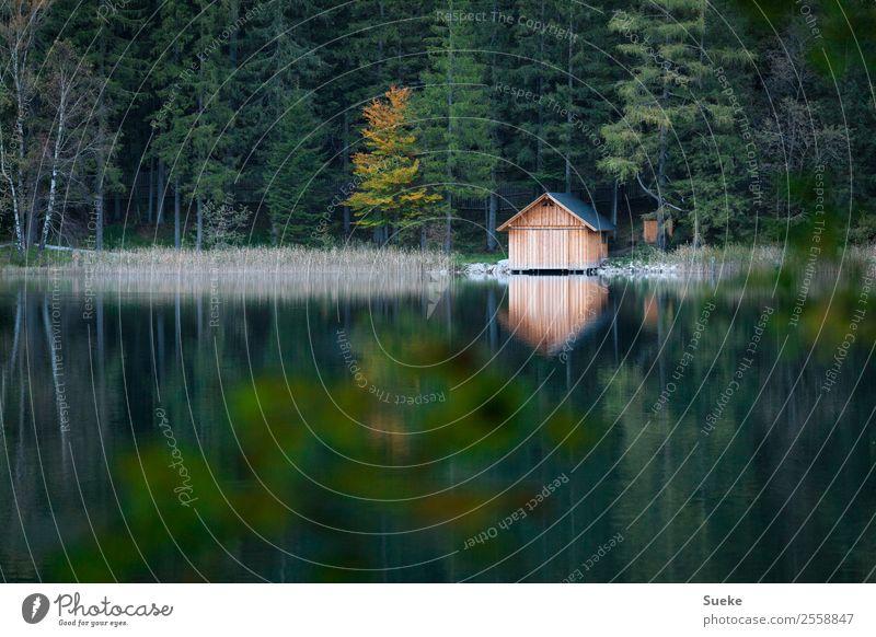 Bergseehütte Natur Ferien & Urlaub & Reisen Pflanze blau grün Wasser Landschaft Erholung Haus ruhig Wald Berge u. Gebirge Herbst Holz Freiheit See