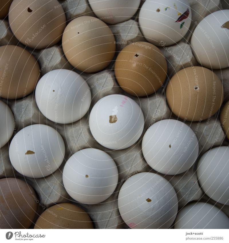mundgeblasene Eier für jede Jahreszeit weiß Lebensmittel Linie braun Ordnung leer rund Kultur einfach Ostern dünn Kreativität diagonal Loch Sammlung