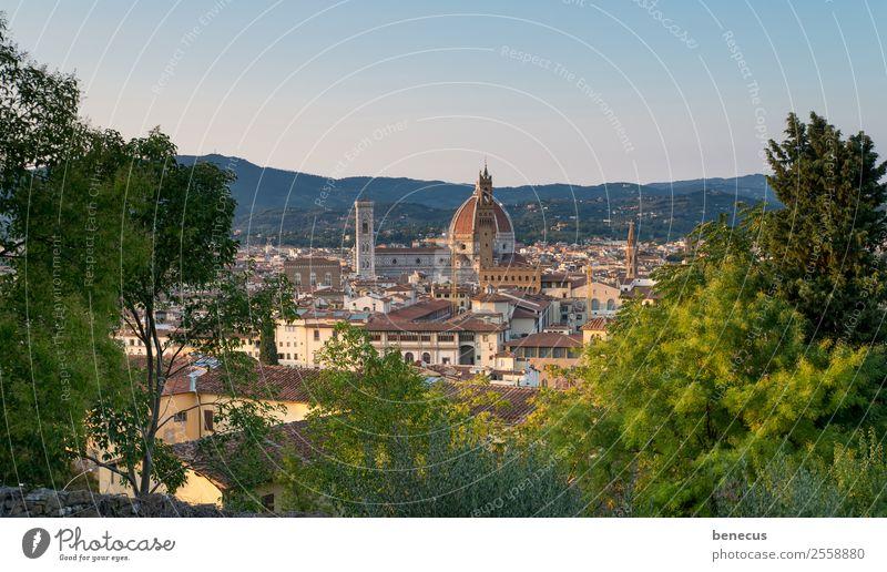 Blick auf Florenz Italien Europa Stadt Kirche Dom Turm Bauwerk Gebäude Architektur Kuppeldach Sehenswürdigkeit Wahrzeichen schön braun grün Warmherzigkeit