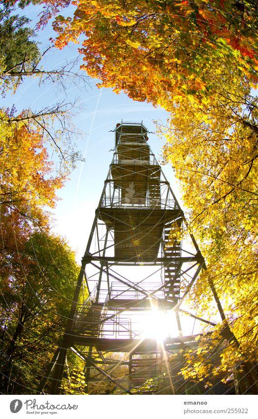 Herbstaussicht Himmel Natur Baum Sonne Ferien & Urlaub & Reisen Sommer Blatt Wald gelb Landschaft Berge u. Gebirge Wärme Wetter Ausflug hoch