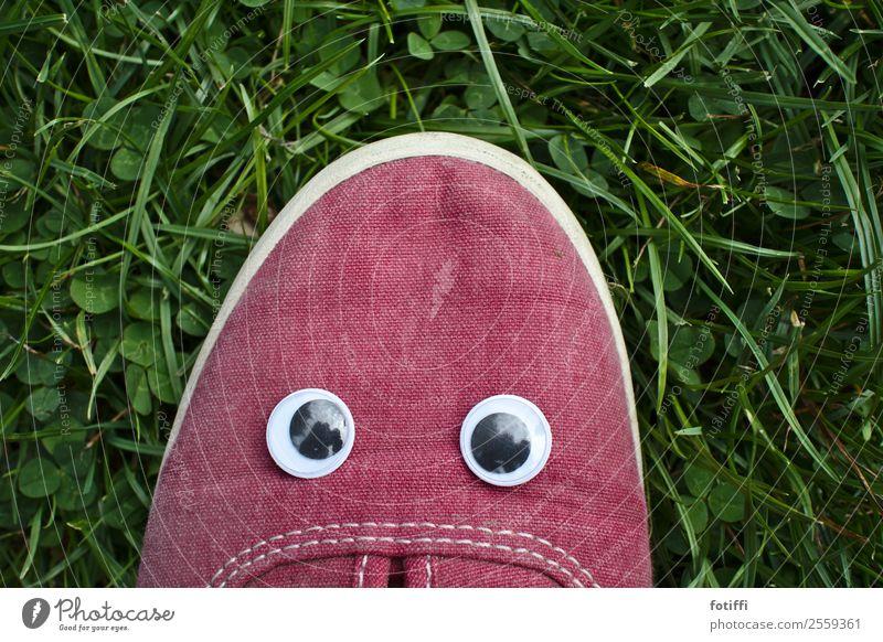 Wackel 1 Gesicht Auge Pflanze Gras fantastisch Schuhe rot wackelauge kindisch kindlich beleidigt Außenaufnahme Blick in die Kamera