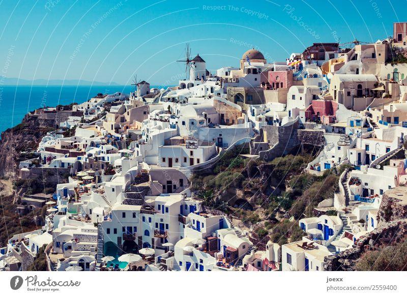Blick über die weißen Häuser in Oia, Santorin, bei Tag, mit alten Windmühlen Küste Sommer Schönes Wetter Ferien & Urlaub & Reisen Außenaufnahme Farbfoto
