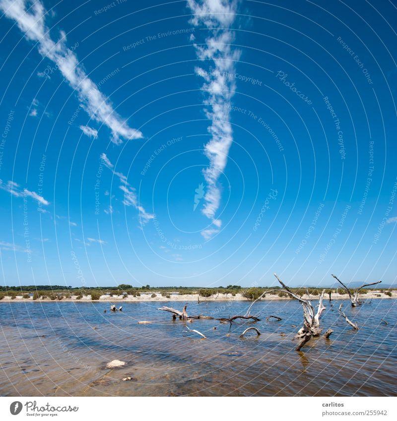 Salzsee Luft Wasser Himmel Sommer Wärme dehydrieren Meerwasser Saline Holz vertrocknet bizarr blau braun weiß grün Landschaft mediterran Mallorca Ses Salines