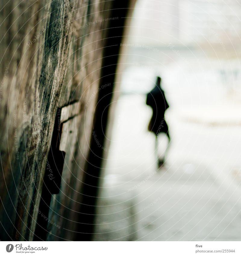 vienna Mensch Ferien & Urlaub & Reisen Mann Erwachsene Wand Mauer außergewöhnlich gehen Freundschaft maskulin Tourismus Ausflug Brücke Abenteuer Stadtzentrum