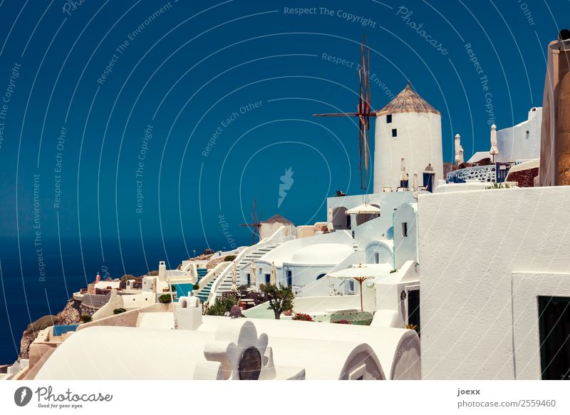 Idyllische weiße Häuser  auf Santorin mit Windmühlen vor blauem Himmel Sommer Ferien & Urlaub & Reisen Schönes Wetter Oia Farbfoto Griechenland Außenaufnahme