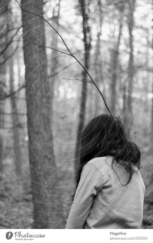 Verzweigt Junge Frau Jugendliche 1 Mensch 18-30 Jahre Erwachsene stehen Horn Hirsche Ast Zweige u. Äste Wald Natur Angst Einsamkeit Tarnung wegdrehen verirrt