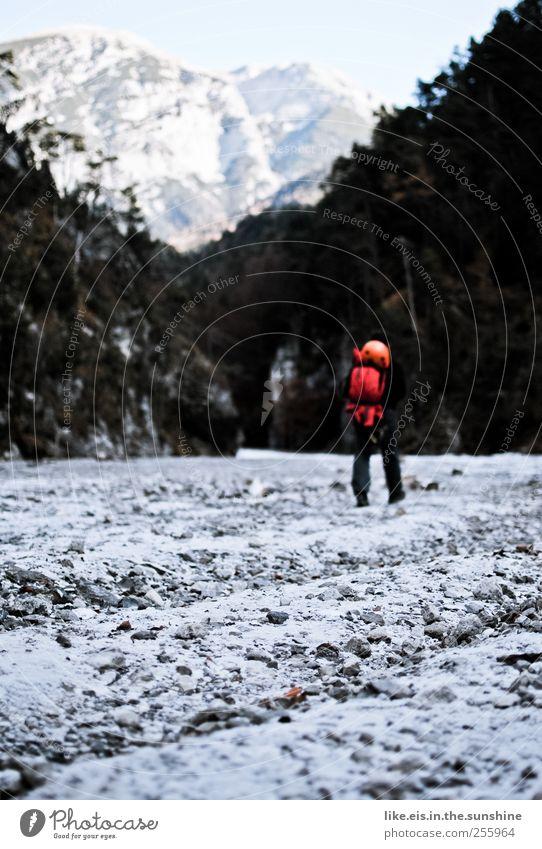 endlich ist er da, der WINTER! Mensch Natur Ferien & Urlaub & Reisen ruhig Einsamkeit Leben Schnee Umwelt Landschaft Berge u. Gebirge Eis Zufriedenheit Freizeit & Hobby Felsen Ausflug wandern