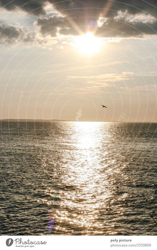 Sonnenuntergang an der Ostsee Natur Ferien & Urlaub & Reisen Sommer Meer Erholung Wolken ruhig Strand Lifestyle Gesundheit Leben Herbst Umwelt Frühling Glück