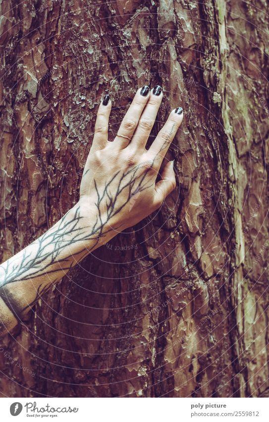 Naturverbunden - [AM108] Jugendliche Junge Frau Sommer Hand Baum 18-30 Jahre Lifestyle Erwachsene Leben Herbst Umwelt Frühling feminin 13-18 Jahre berühren