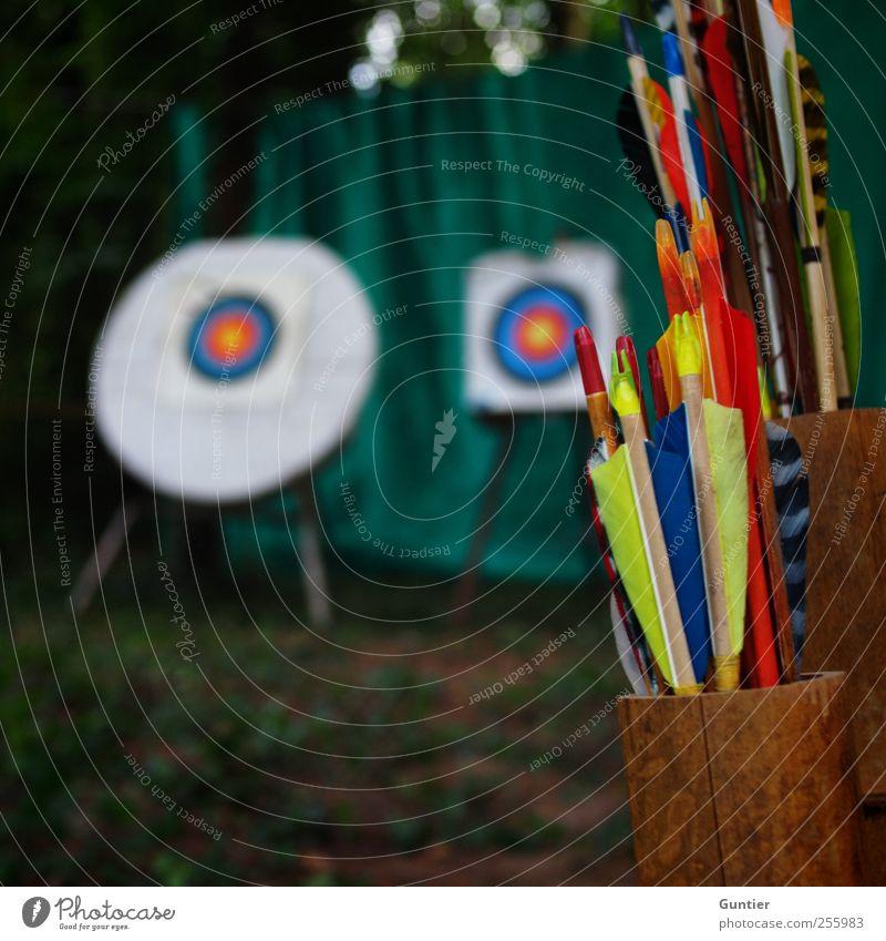 Choose your target Sport blau braun mehrfarbig gelb grün rot schwarz weiß Bogensport Zielscheibe 2 Pfeile Feder Fangnetz Waldboden ehrgeizig Röhren Baum