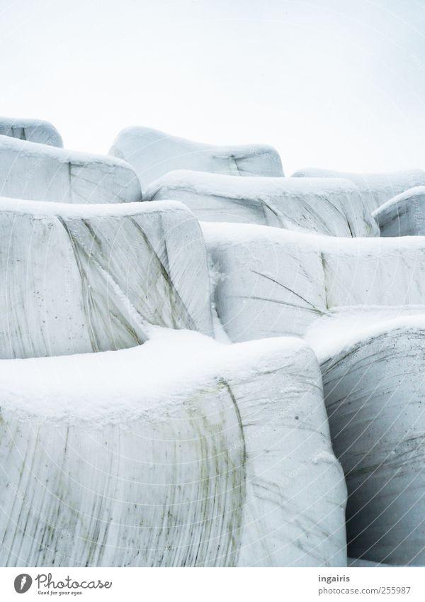 Wintervorrat Himmel blau weiß schwarz Schnee grau Eis Frost bedrohlich Hügel Kunststoff Landwirtschaft Forstwirtschaft Futter Verpackung