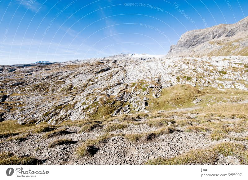 schneeloser Glacier III Himmel Natur Sommer ruhig Erholung Landschaft Berge u. Gebirge Herbst Gras Freiheit Felsen Zufriedenheit natürlich wild wandern Ausflug