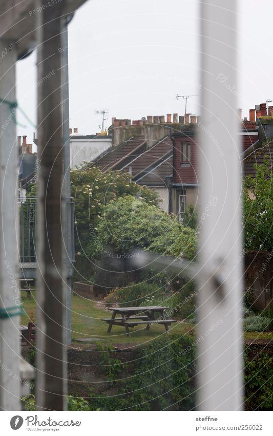 Kalendertür Baum Stadt ruhig Haus Wiese Fenster Garten Park Idylle Aussicht Picknick England trüb Einfamilienhaus Kleinstadt Fensterrahmen