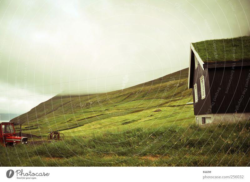 Scheune Ferne Insel Berge u. Gebirge Haus Umwelt Natur Landschaft Wolken Gewitterwolken Klima Wetter Nebel Gras Wiese Felsen Küste Bucht Fjord Dorf Hütte