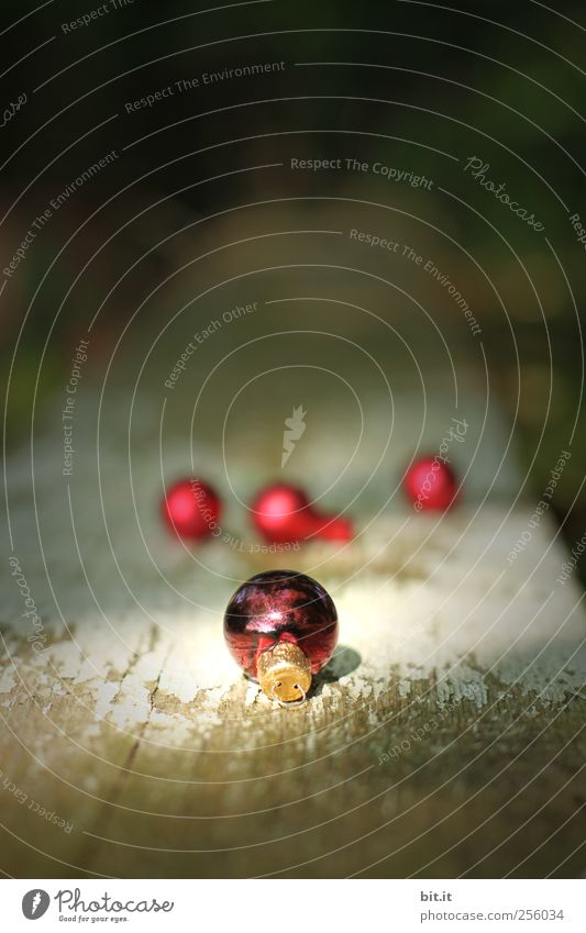 Kugellager III Wohnung einrichten Dekoration & Verzierung Feste & Feiern Weihnachten & Advent Kitsch Krimskrams glänzend liegen rot schwarz Vorfreude Tradition