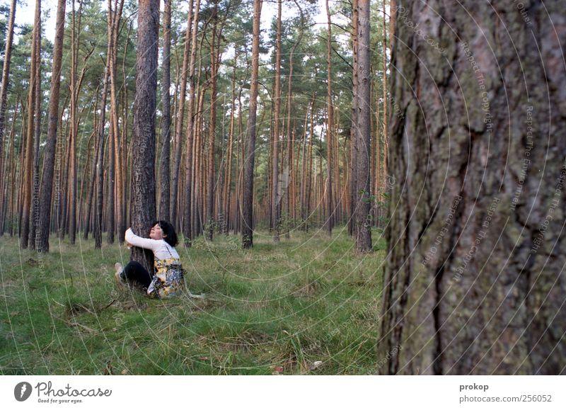 Umarm doch mal wieder einen Baum Frau Mensch Natur Jugendliche schön Erwachsene Wald feminin Umwelt Landschaft Gefühle Gras Glück Sicherheit