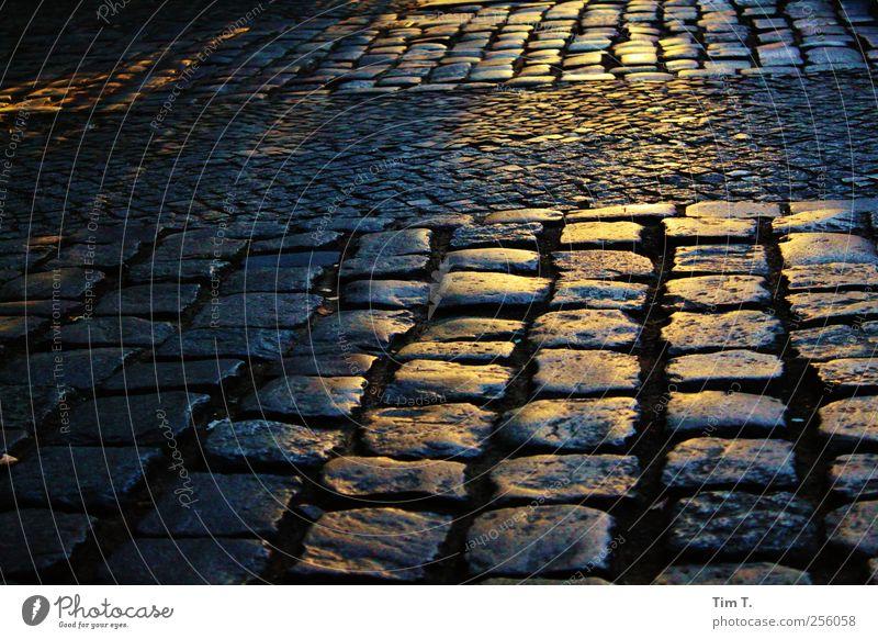 Kastanienallee Berlin Prenzlauer Berg Stadt Stadtzentrum Altstadt Menschenleer Kopfsteinpflaster Bürgersteig Farbfoto Außenaufnahme Abend Dämmerung