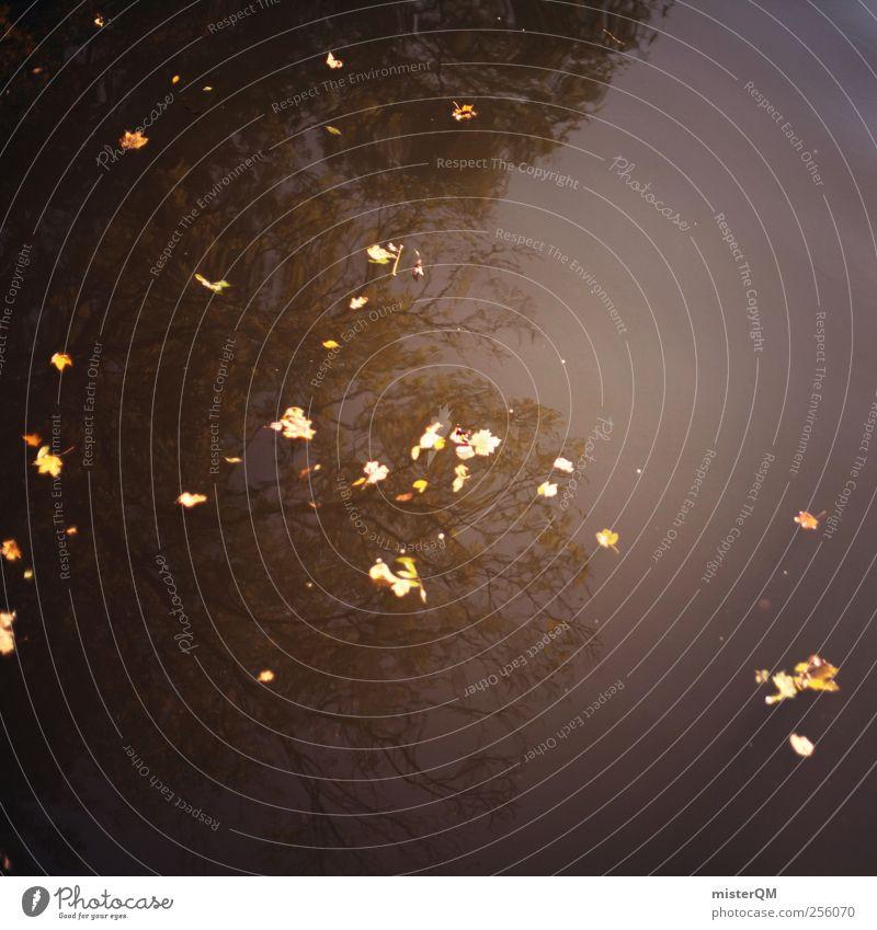Herbstwässerchen. Wasser Baum Wald Kunst ästhetisch Idylle Herbstlaub Wasseroberfläche herbstlich abgelegen Herbstfärbung Herbstbeginn Herbstwetter Herbstwald