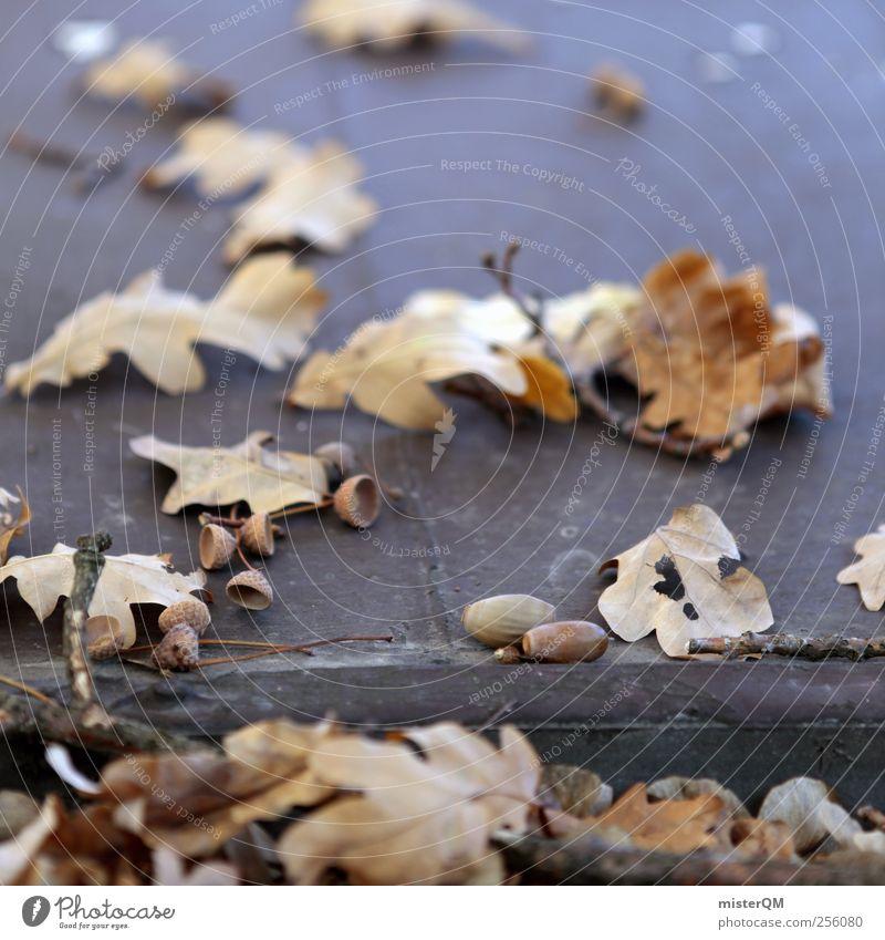 Herbsttag. Natur Pflanze Einsamkeit Umwelt Landschaft Klima ästhetisch Dach Schönes Wetter Herbstlaub Klimawandel herbstlich Herbstfärbung Herbstbeginn