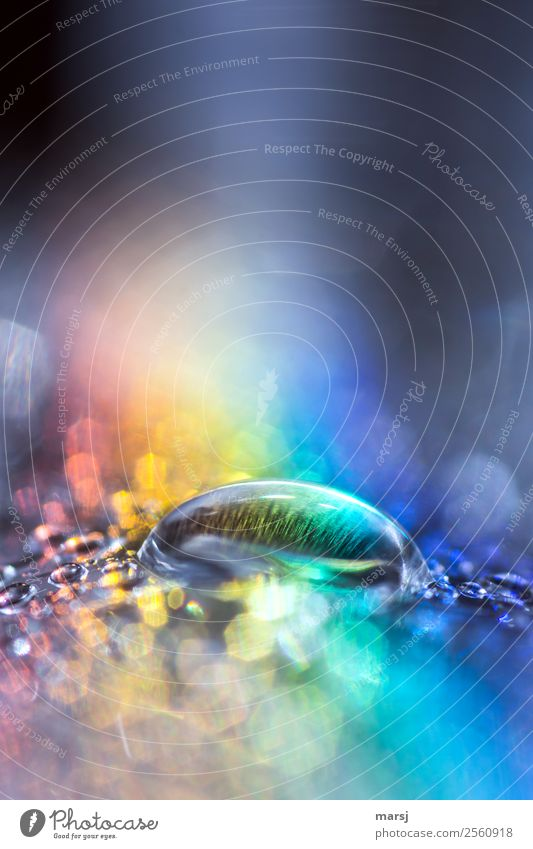 Klarer Wassertropfen in Regenbogenbad Reflexion & Spiegelung Tropfen Lichtbrechung Surrealismus Lichterscheinung Experiment Farbfoto mehrfarbig regenbogenfarben