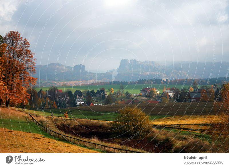 Der Herbst kommt Ferien & Urlaub & Reisen Tourismus Ausflug Ferne Berge u. Gebirge wandern Umwelt Natur Landschaft Feld Sächsische Schweiz Elbsandsteingebirge