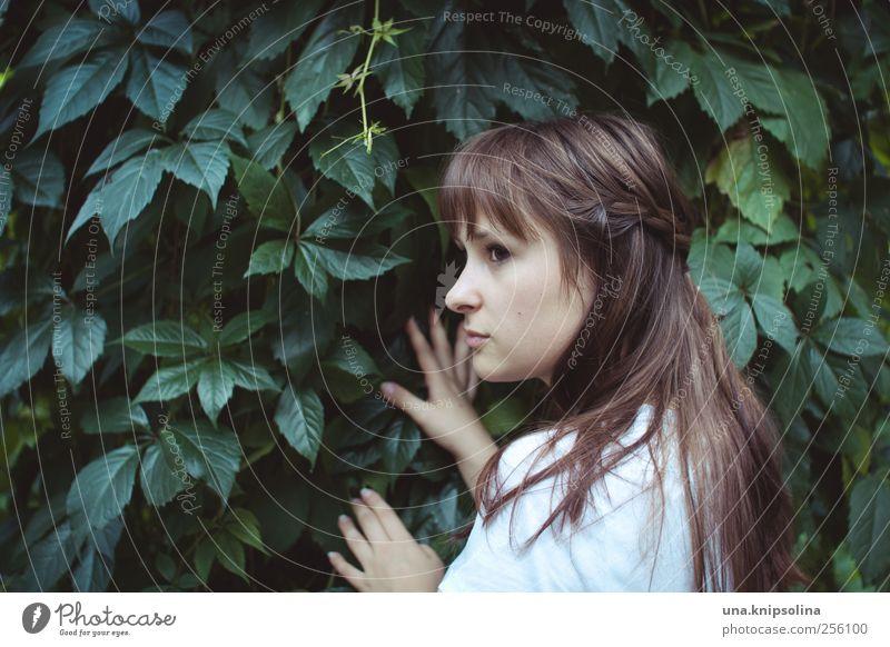 i don't feel it anymore Frau Mensch Natur Jugendliche grün schön Pflanze Blatt ruhig Erwachsene feminin Umwelt Landschaft Haare & Frisuren Denken Traurigkeit