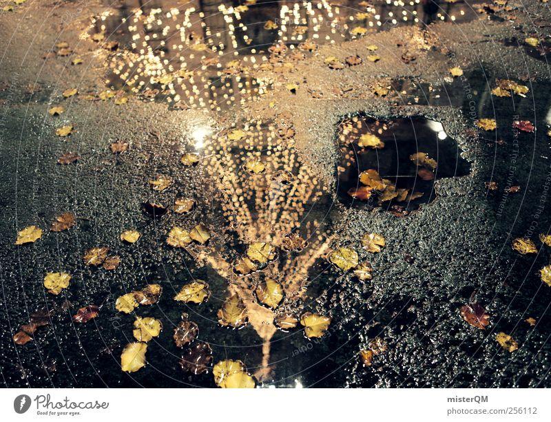 Weihnachten NY IV Kunst ästhetisch Weihnachten & Advent Dezember Weihnachtsbaum Beleuchtung Wasseroberfläche Vorfreude Tanne Asphalt Straße Farbfoto