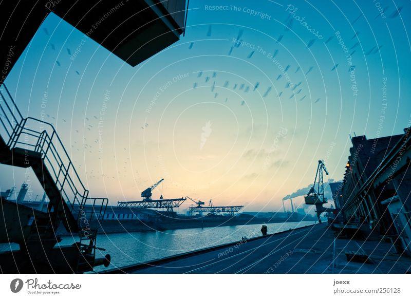 Die Arbeit ruht Himmel Wasser blau Stadt ruhig schwarz gelb Vogel Treppe Tiergruppe Fluss Fabrik Hafen Gleise Schifffahrt Treppengeländer