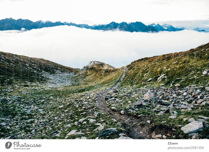 Venet Gipfel | Pitztal | Morgendämmerung Himmel Natur Ferien & Urlaub & Reisen Sommer Landschaft Erholung Wolken Einsamkeit ruhig Berge u. Gebirge Umwelt