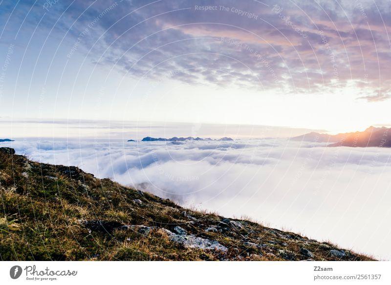 Sonnenaufgang / Kreuzjoch Himmel Natur Ferien & Urlaub & Reisen Sommer Landschaft Erholung Wolken ruhig Ferne Berge u. Gebirge Umwelt natürlich Feste & Feiern