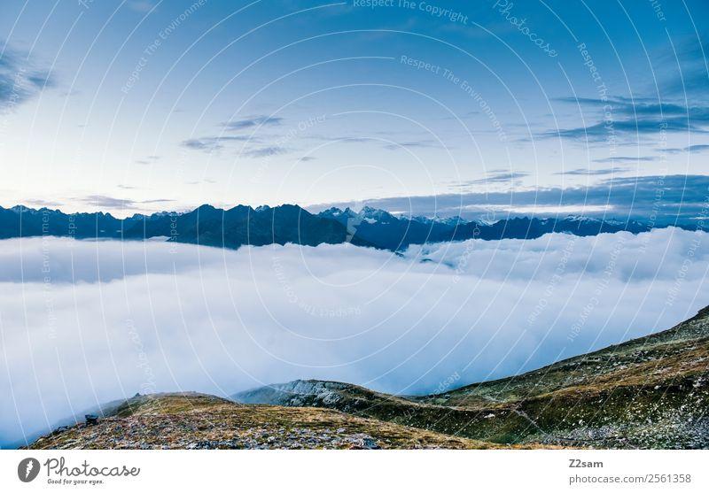Über den Wolken | Gipfel | Alpen | Österreich Natur Ferien & Urlaub & Reisen Sommer blau Einsamkeit ruhig Ferne Berge u. Gebirge Umwelt natürlich Freiheit