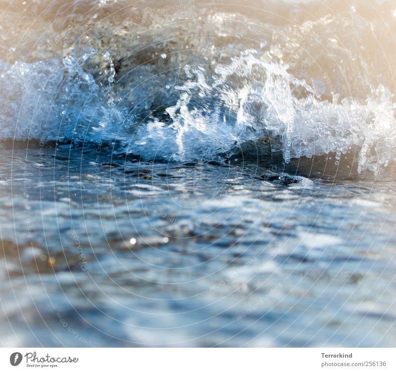 DieAlteKatzeUndDasMeer | Kater.wäsche Wasser Ostsee Wellen schwappen Schwimmen & Baden rollen aufprallen aufschlagen fallen zerspringen zerschlagen Zerstörung